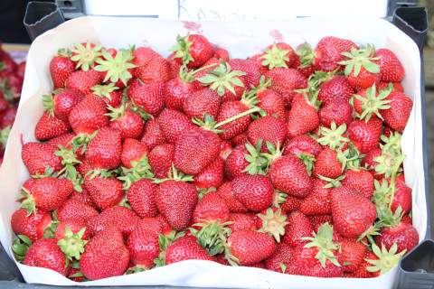 A lot of new products were presented at the Berry Festival